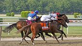 Drosselmeyer Wins The Belmont Stakes