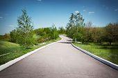 Landscape with an asphalt track in a park