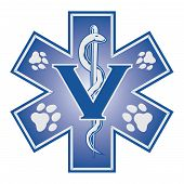 Veterinarian Emergency Medical Symbol