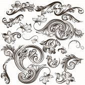 Collection Of Vintage Hand Drawn Swirl Elements