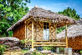 Wooden Bungalow Resort In Ko Phi Phi Island, Thailand