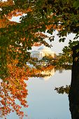 Washington DC in Autumn - Jefferson Memorial as seen from Tidal Basin