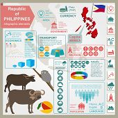 pic of carabao  - Philippines infographics statistical data sights - JPG