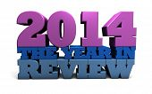 2014 the year in review