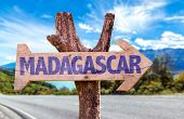 picture of dauphin  - Madagascar wooden sign with road background - JPG