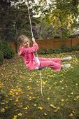 pic of swing  - Cute girl playing on a backyard rope swing outdoors  - JPG