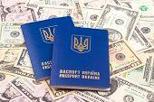picture of passport cover  - Ukrainian passport - JPG
