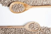 stock photo of roughage  - Sunflower seeds and spoon isolated on a white background - JPG