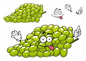 pic of oblong  - Cartoon bunch of green grape character with shiny oblong seedless berries for healthy dessert or agriculture design - JPG