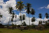 pic of west village  - the small village of Senopi in west papua is a good example of traditional west papuan villages with wooden houses - JPG