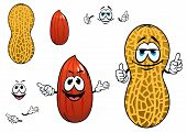 stock photo of legume  - Funny cartoon peanuts characters with dried kernel in brown seed coat and whole legume fruit in yellow pod - JPG