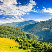 stock photo of haystacks  - summer landscape - JPG