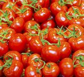 image of stall  - real organic tomatoes at a market stall - JPG