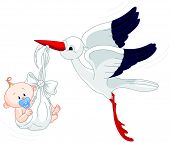 pic of stork  - A cartoon illustration of a stork delivering a newborn baby boy - JPG