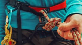stock photo of climb up  - Rock climber wearing safety harness rope and climbing equipment close - JPG