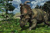 Prehistoric Scene With Albertaceratops