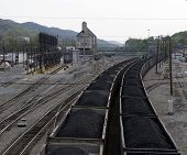 railcars loaded with coal