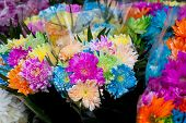 stock photo of taxco  - Colorful flowers in the market - JPG