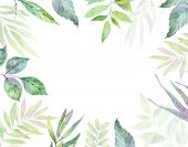 Hand Drawn Watercolor Illustration. Botanical Clipart. Frame With Green Leaves, Herbs And Branches. poster