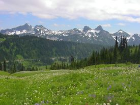 stock photo of mountain-range  - Mountain ranges as seen from Paradise - JPG