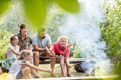 Happy family and friends roasting marshmallows over burning campfire at park poster
