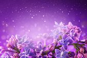 Lilac flowers bunch violet art design background. Beautiful violet Lilac flower closeup. Watercolor  poster