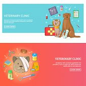 Veterinary Clinic 2 Horizontal Banners Concept. Cartoon Illustration Of Veterinary Clinic Horizontal poster