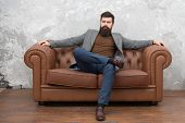 Bearded Man With Confident Face Sit Leather Couch. Loft Interior Apartment. Businessman Realtor Work poster