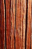Fencepost Background