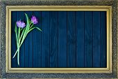 A Bouquet Of Tulips In A Frame For Paintings On A Black Background poster