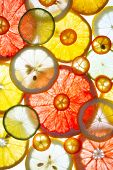 pic of kumquat  - Sliced citrus fruits background - JPG
