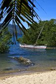 Madagascar Nosy Be Rock  Branch Boat Palm Lagoon And Coastline