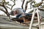 stock photo of shingle  - Man using crowbar to remove rotten wood from leaky roof - JPG