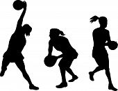 image of netball  - Vector art on the sport of netball on white background - JPG