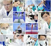 Montage of a medical or scientific research team men and women using microscopes and looking at test