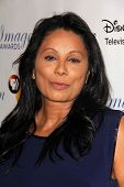 LOS ANGELES - AUG 16:  Wanda De Jesus at the 28th Annual Imagen Awards at the Beverly Hilton Hotel o
