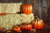 Pumpkin Jack O Lantern on Wood Grunge Rustic Background
