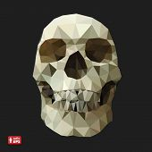 Human Skull in a Triangular Style.