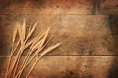 stock photo of fall-wheat  - Dried wheat ears and a old wooden background - JPG