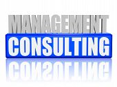 Management Consulting In 3D Letters And Block