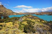 National Park Chile - Torres del Paine. Azure water of Lake Pehoe between green and yellow hilly coast