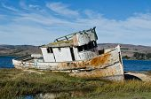 image of shipwreck  - Old Shipwrecked Boat in Tomales Bay California - JPG