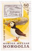 Stamp Printed In Mongolia Shows The Image Of The Graf Zeppelin & Puffin From The Series