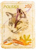 Stamp Printed In Poland Shows Image Of A Fox And Shotgun
