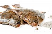 stock photo of flounder  - Fresh fish  - JPG