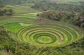Moray Inca's Ruins, in Sacred Valley, Peru