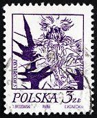 Postage Stamp Poland 1974 Thistle, Flowering Plant