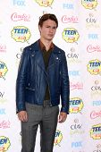 LOS ANGELES - AUG 10:  Ansel Elgort at the 2014 Teen Choice Awards Press Room at Shrine Auditorium o
