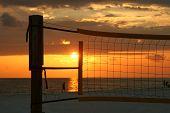 Sunset In A Net