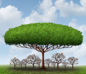 foto of dominate  - Dominating the market business concept as a symbol of taking over a sector by absorbing investment and growth potential with a metaphor of a big tree blocking the sun from smaller competitors resulting in a healthy profits while destroying the competitors - JPG